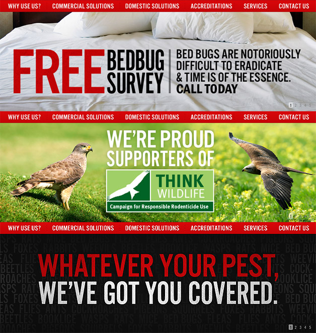 A screenshot of the Direct Pest Control banners